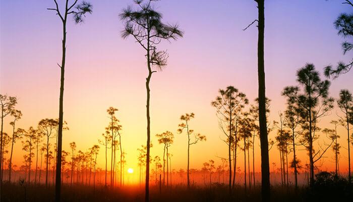 【全59カ所】一度は訪れたい!アメリカ国立公園の絶景高品質壁紙まとめ