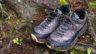 ワークマンからついにこの秋登場、山歩きにも使えるウォーキングシューズ「アクティブハイク」最速レビュー