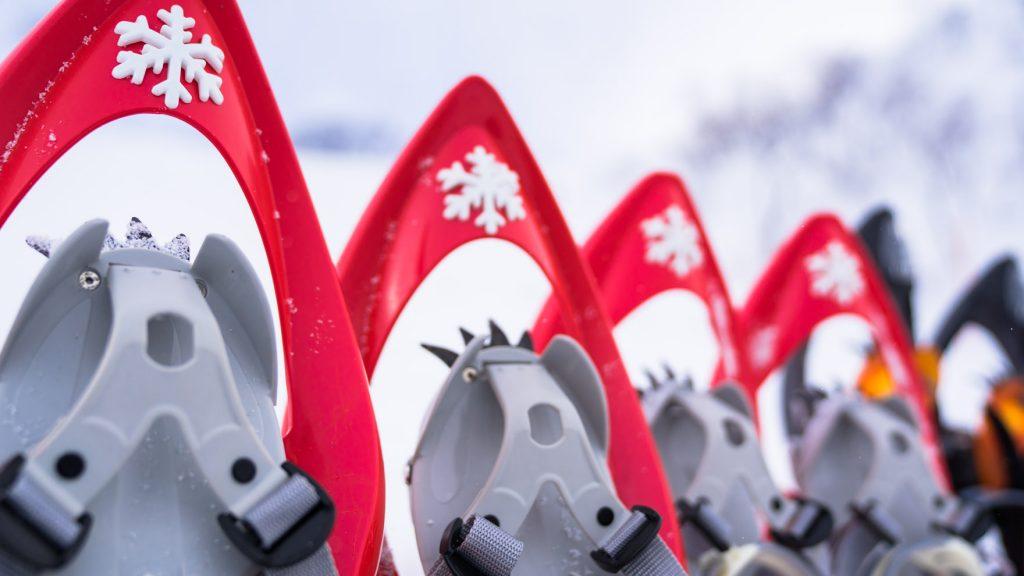Review:INOOK FREESTEP フランス発、スノーハイクで雪を楽しむためのスノーシュー